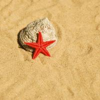 Bazénové pieskové filtrácie